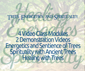 Trees, Energetics, and Spirituality Online Class