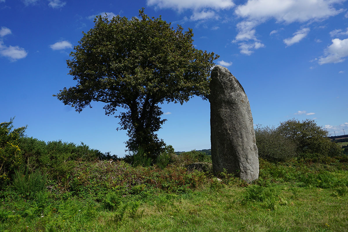 The menhir of Kergornec and earth acupunture