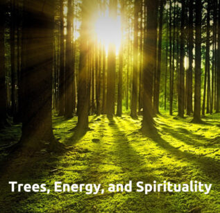 Trees, Energy, and Spirituality online class