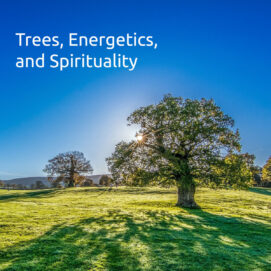 Trees, energetics, and spirituality